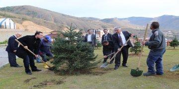 Gümüşhane Üniversitesi'nde bin ağaç toprakla buluştu