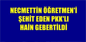 NECMETTİN ÖĞRETMENİN PKK'LI KATİLİ GEBERTİLEREK CEHENNEME GÖNDERİLDİ