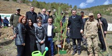 ŞEHİT ASTSUBAY FERHAT GEDİK'E GÜMÜŞHANE'DE FİDANLI VEFA