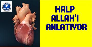 KALP ALLAH'I ANLATIYOR