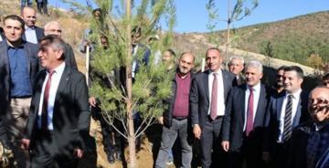 ŞİDEF'TEN ŞİRAN'DA ÖRNEK AĞAÇLANDIRMA ÇALIŞMASI